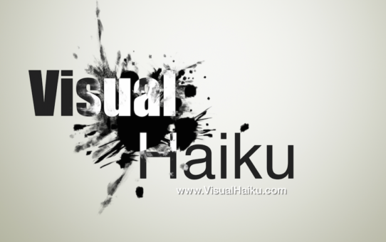 Visual Haiku