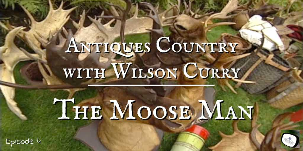 mounted moose heads