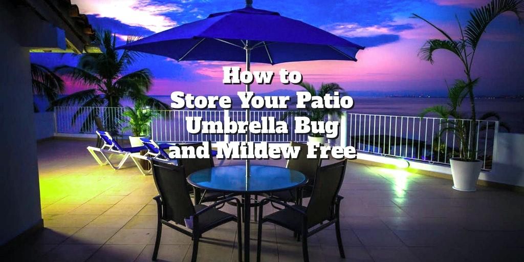 umbrella feature
