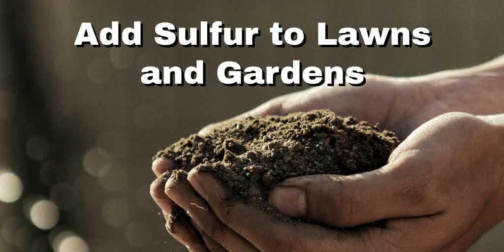 Adding sulphur to your soil